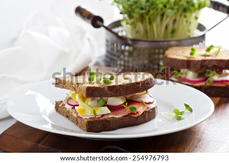 Sandwich with smoked salmon, radishes and chopped egg - stock photo