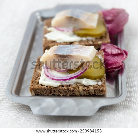 Sandwiches of rye bread with herring, onions and cucumber - stock photo