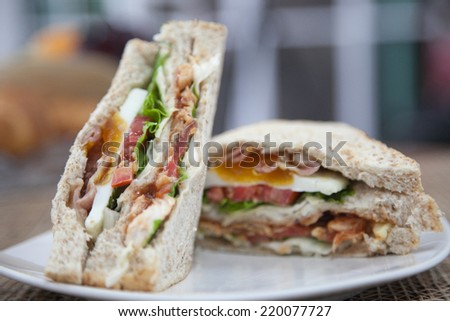 Sandwiches served on a white dish. - stock photo