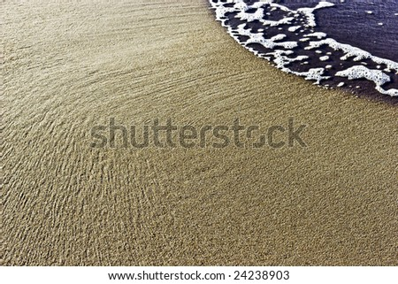 Sandy background - stock photo