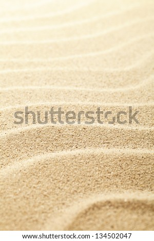 Sandy background. Sand beach texture for summer. Macro shot. Copy space - stock photo