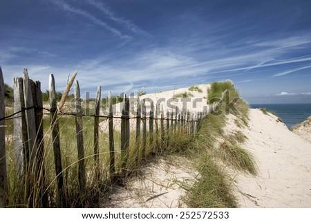 Sandy beach and sand dunes - stock photo