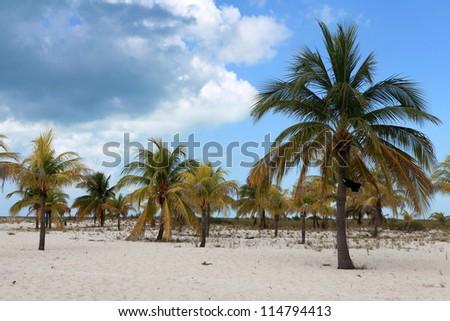 Sandy coast and clear sea - stock photo