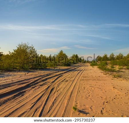 sandy desert at the evening - stock photo