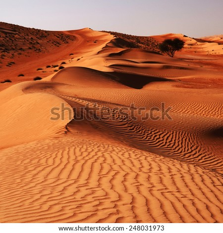 Sandy desert Wahiba in Oman, Near East - stock photo