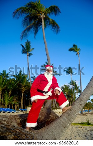Santa claus is on vacation. He is standing on beach with palms. - stock photo