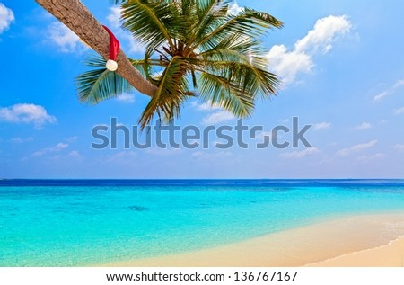 Santa hat is on palm tree,  Maldives, The Indian Ocean - stock photo