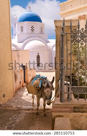 Santorini Greece Donkey Luggage Delivery to Hotels - stock photo