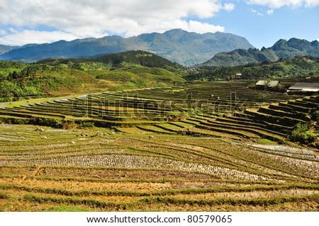 sapa, vietnam - stock photo