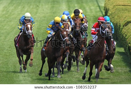 "SARATOGA SPRINGS - JUL 22: Thoroughbreds storm down the turf in a race on Jul 22, 2012 at Saratoga Race Course in Saratoga Springs, NY. Winner is Ramon Dominguez  (blue cap center) and ""Summer Front"". - stock photo"