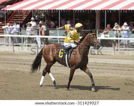 SARATOGA SPRINGS, NY - August 29, 2015: #6 Attraction ridden by Kendrick Carmouche before the 2nd race on Travers Day at Historic Saratoga Race Course on August 29, 2015 Saratoga Springs, New York - stock photo