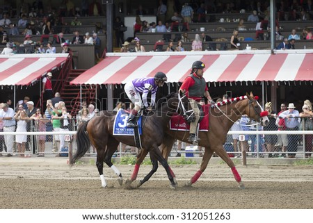 SARATOGA SPRINGS, NY - August 29, 2015: Competitive Edge in the Post Parade for the King's Bishop Stakes on Travers Day at Historic Saratoga Race Course on August 29, 2015 Saratoga Springs, New York - stock photo