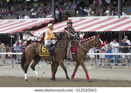 SARATOGA SPRINGS, NY - August 29, 2015: Dame Dorothy in the Post Parade for the Ballerina Stakes on Travers Day at Historic Saratoga Race Course on August 29, 2015 Saratoga Springs, New York - stock photo