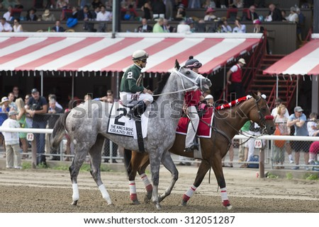 SARATOGA SPRINGS, NY - August 29, 2015: Grand Bili in the Post Parade for the King's Bishop Stakes on Travers Day at Historic Saratoga Race Course on August 29, 2015 Saratoga Springs, New York - stock photo