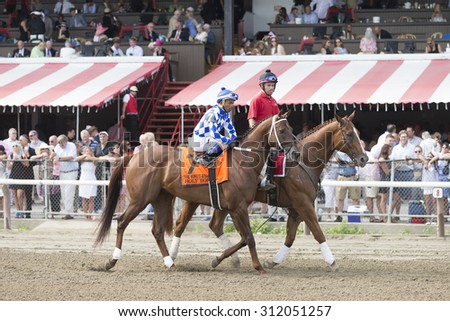 SARATOGA SPRINGS, NY - August 29, 2015: Holy Boss in the Post Parade for the King's Bishop Stakes on Travers Day at Historic Saratoga Race Course on August 29, 2015 Saratoga Springs, New York - stock photo