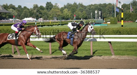 """SARATOGA SPRINGS, NY- AUGUST 30: Jamie Theriot aboard """"All West"""" leads out of the clubhouse turn in the 7th race at Saratoga Race Track, August 30, 2009 in Saratoga Springs, NY. - stock photo"""