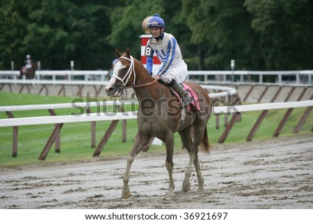 """SARATOGA SPRINGS, NY- AUGUST 29: """"Moonlark"""" with Jamie Theriot aboard returns to be unsaddled after the 8th at Saratoga Race Track, August 29, 2009 in Saratoga Springs, NY. - stock photo"""
