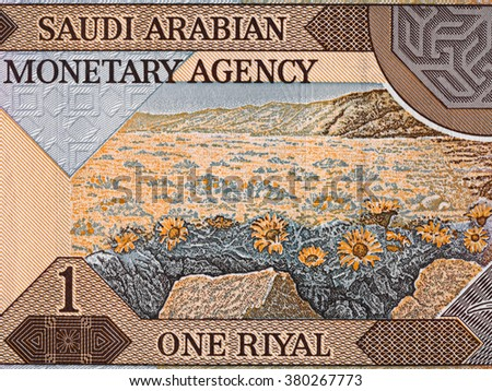 Saudi Arabia 1 riyal banknote reverse macro, natural scene with flowers, Saudi arabian money closeup - stock photo