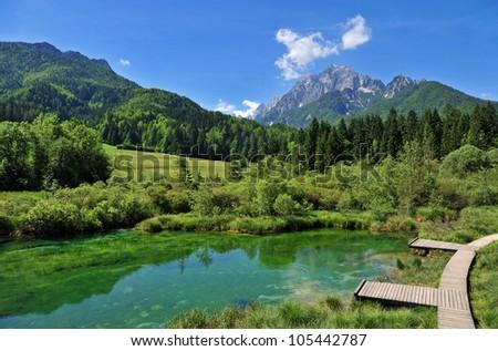 sava spring, zelenci - stock photo