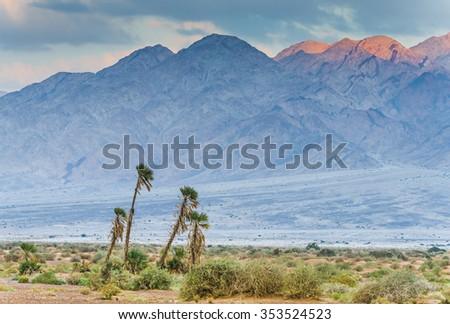 Savannah valley of Arava desert near a border between Israel and Jordan - stock photo