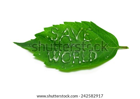 Save the world. Ecology concept on white background. - stock photo