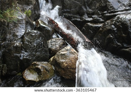 Save water Save life,  Environmental protection concept, World water day - stock photo