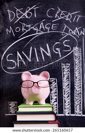 Saving plan, budget, piggybank - stock photo