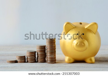 Saving plan with Gold Piggy bank  - stock photo