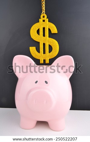 Saving the Dollars - stock photo