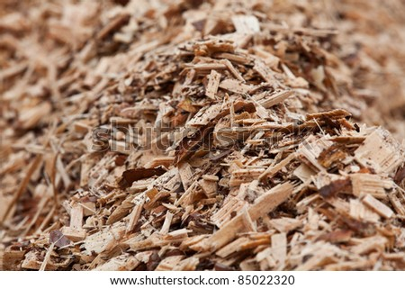 sawn timber closeup - stock photo
