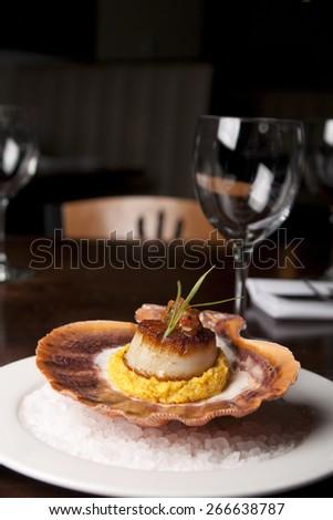 Scallop dinner - stock photo