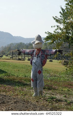scarecrow in vegetable field on a farm in rural area - stock photo