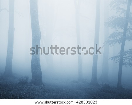 Scary blue fog into a cold autumn day - stock photo