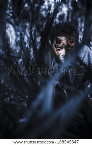 Scary blue horror scene of an evil man hiding in thick grass at a dark silent forest waiting for a revenge attack. To kill or be killed - stock photo