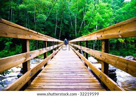 Scary Wooden Bridge Crossing - stock photo