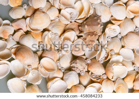 Scattered seashells and colored glass beads. Pearl Pearls in shells, memories of the holiday by the sea - stock photo