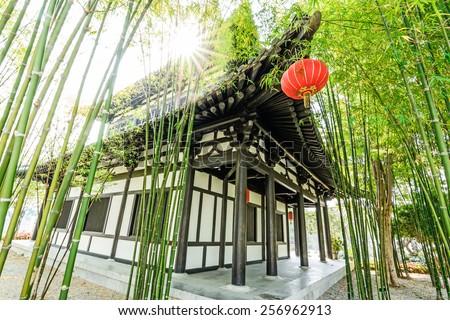 Scene of the chinese bamboo garden - stock photo