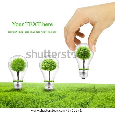 Scene of the hand plant tree in lightbulb on green grass - stock photo
