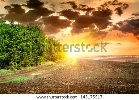 Scene on sunset over black ploughed field - stock photo