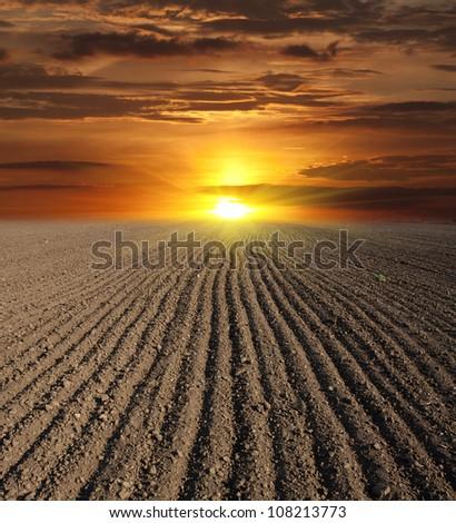 scene on sunset over plougged field - stock photo