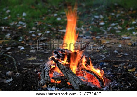 Scene with bonfire in the forest  - stock photo