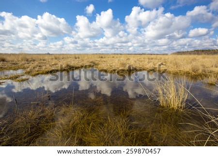 Scene with small lake in steppe - stock photo