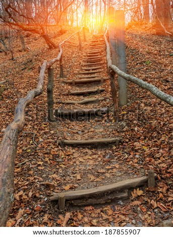 scene with wooden stairs in autumn forest - stock photo