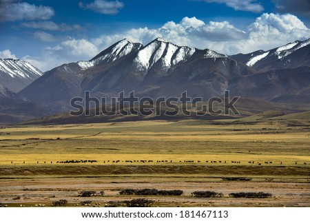 Scenery in Tibet - stock photo