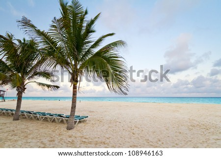 Scenery of Caribbean beach with palm trees - stock photo