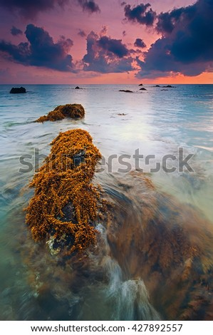 Scenery of Kemasik Beach in Terengganu, Malaysia During Low Tide In Colorful Cloudy Sky With Mossy Rocks In The Foreground. Soft Focus Due To Long Exposure And Noise Visible - stock photo