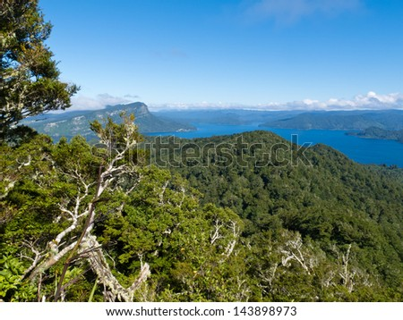 Scenic forest wilderness landscape of Urewera National Park with blue surface of Lake Waikaremoana  Hawke's Bay district of North Island of New Zealand - stock photo