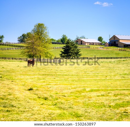 Scenic image of a horse farm with stables and pasture - stock photo
