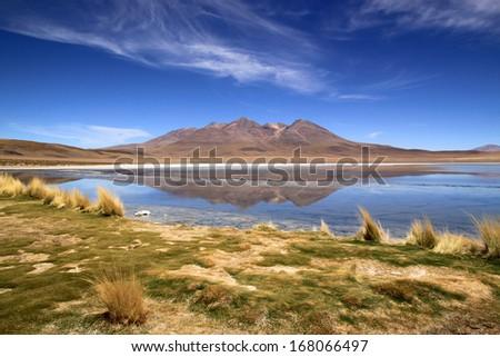 Scenic lagoon in Bolivia, South America Laguna de Canapa  - stock photo