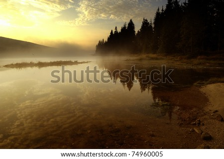 Scenic Lake and Forest in the Sunset - stock photo